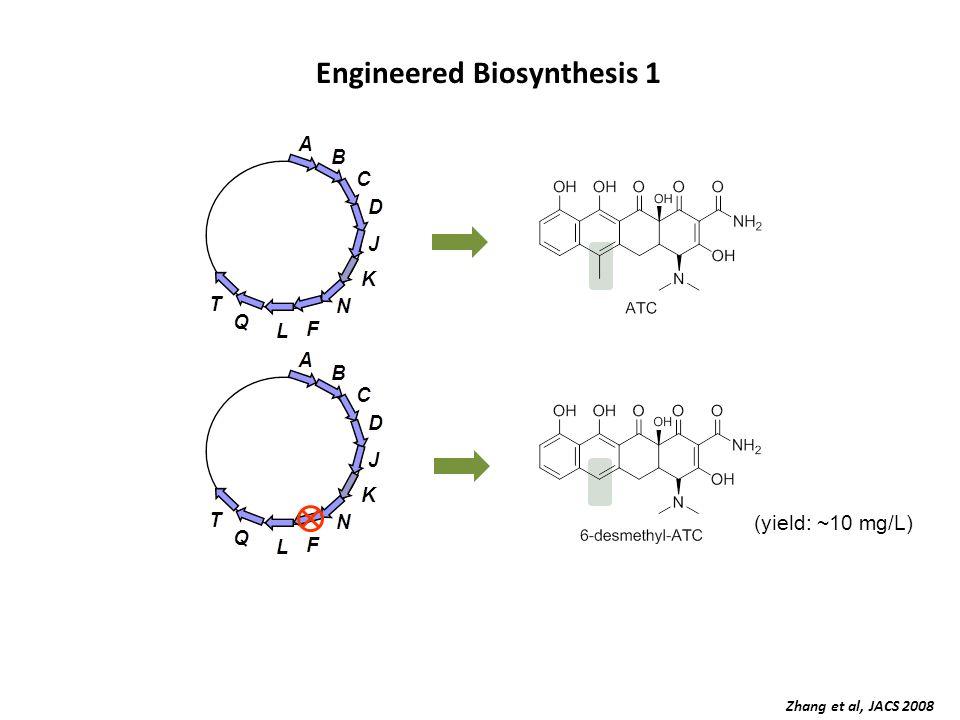 Engineered Biosynthesis 1