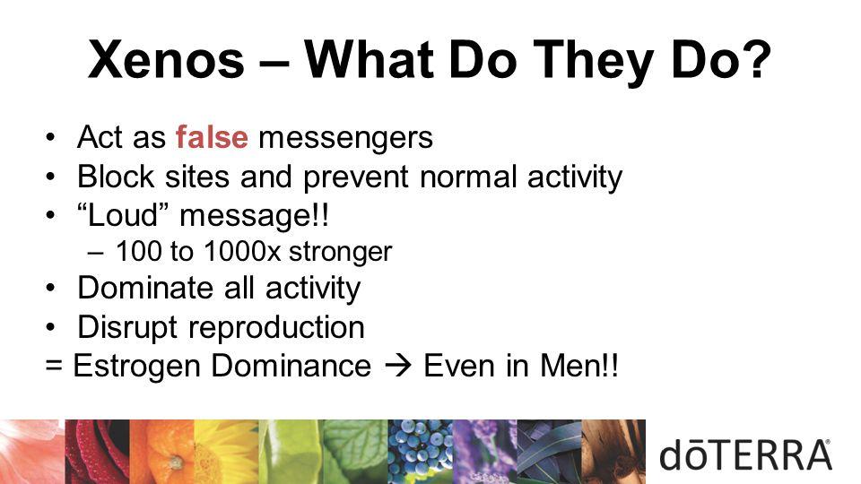 Xenos – What Do They Do Act as false messengers