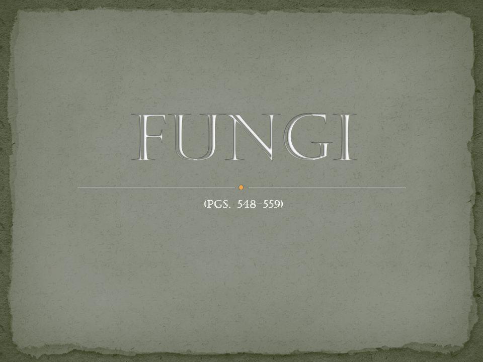 Fungi (pgs. 548-559)