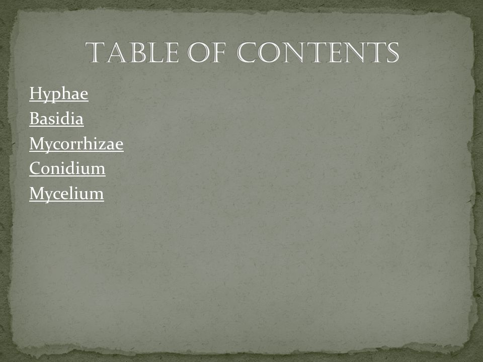 Table Of Contents Hyphae Basidia Mycorrhizae Conidium Mycelium