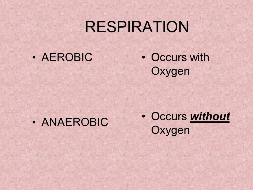 RESPIRATION AEROBIC ANAEROBIC Occurs with Oxygen Occurs without Oxygen