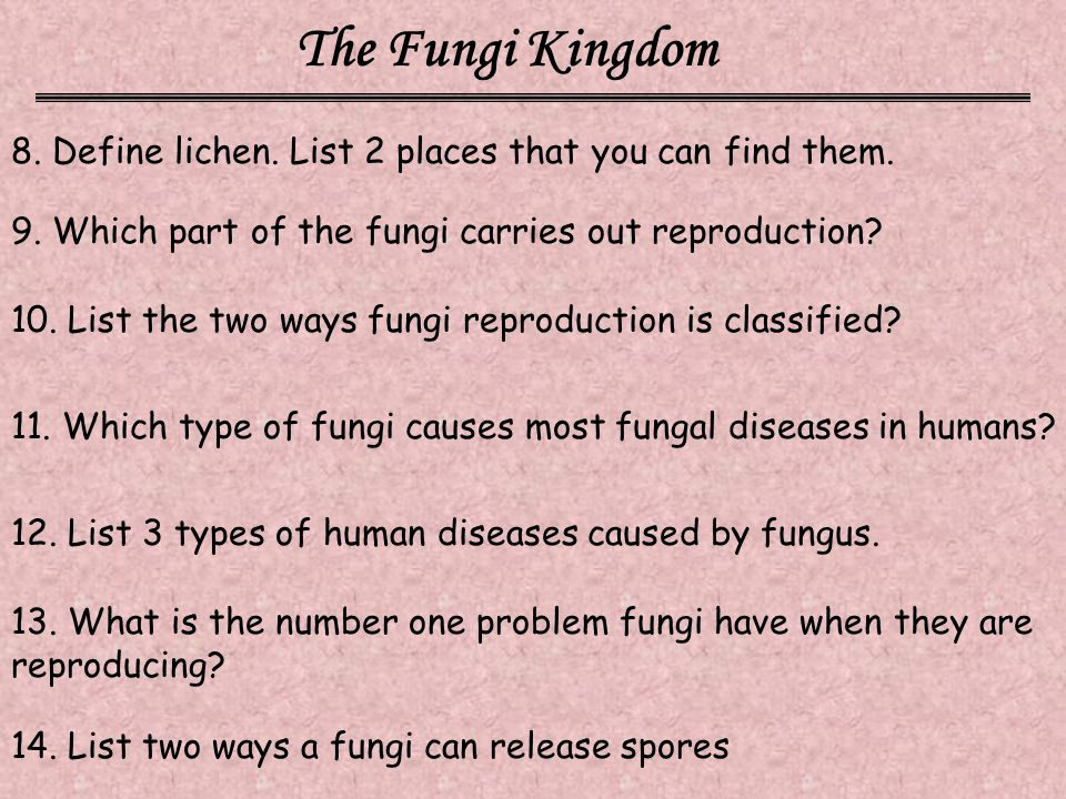 The Fungi Kingdom 8. Define lichen. List 2 places that you can find them. 9. Which part of the fungi carries out reproduction