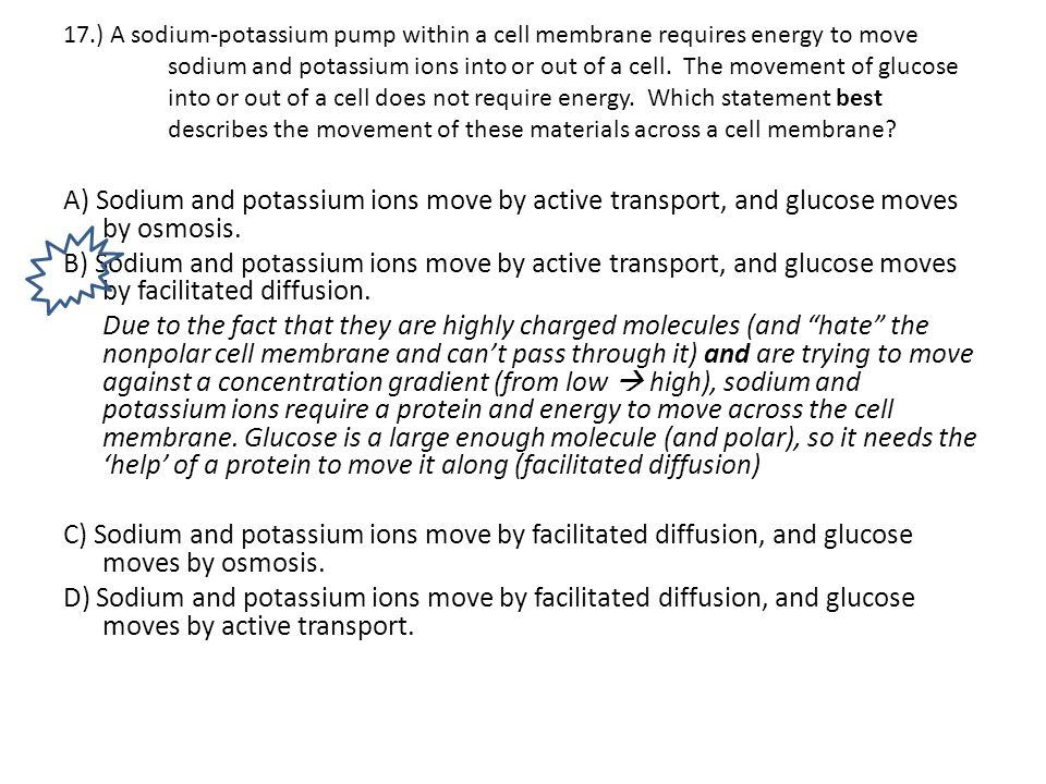 17.) A sodium-potassium pump within a cell membrane requires energy to move sodium and potassium ions into or out of a cell. The movement of glucose into or out of a cell does not require energy. Which statement best describes the movement of these materials across a cell membrane