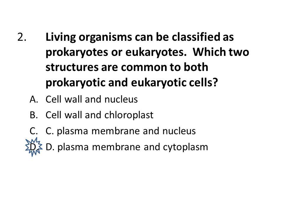 2. Living organisms can be classified as. prokaryotes or eukaryotes