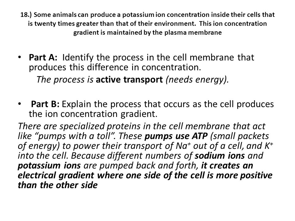 The process is active transport (needs energy).