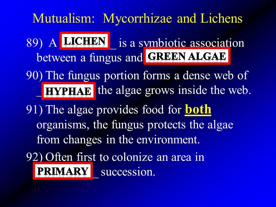 Mutualism: Mycorrhizae and Lichens