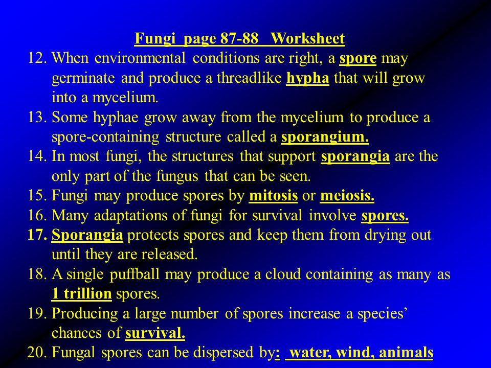 Fungi page 87-88 Worksheet