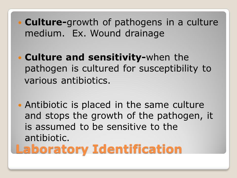 Laboratory Identification