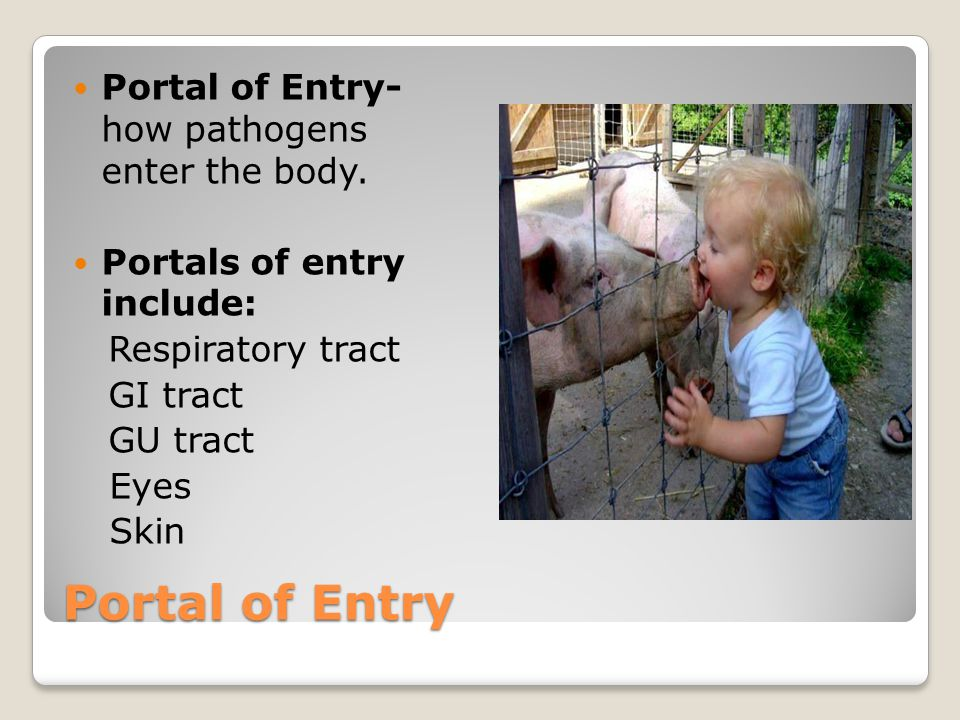 Portal of Entry Portal of Entry- how pathogens enter the body.