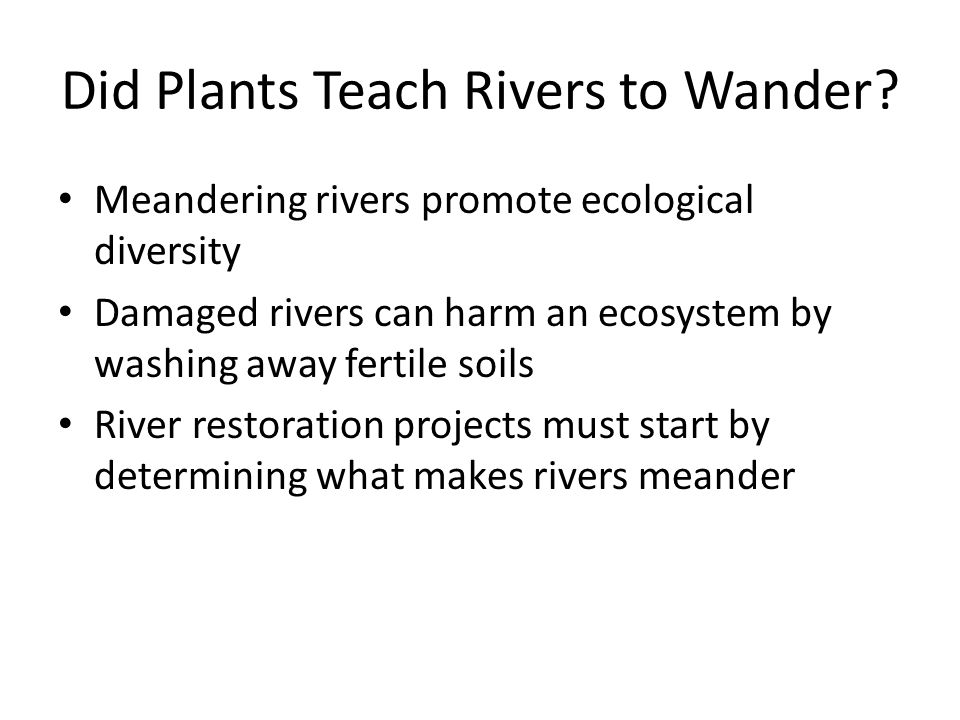Did Plants Teach Rivers to Wander