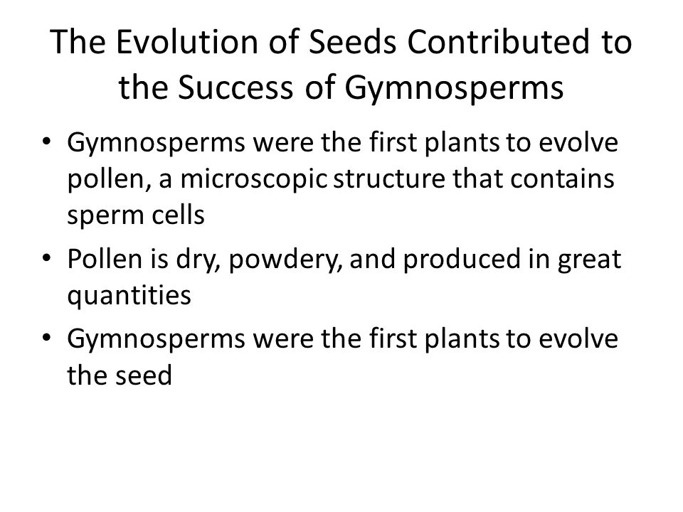 The Evolution of Seeds Contributed to the Success of Gymnosperms