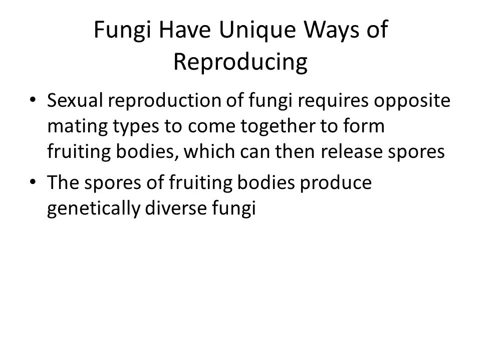 Fungi Have Unique Ways of Reproducing