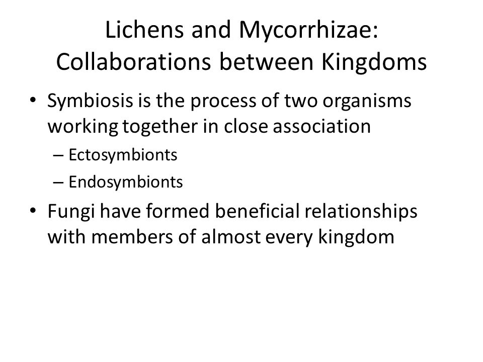 Lichens and Mycorrhizae: Collaborations between Kingdoms
