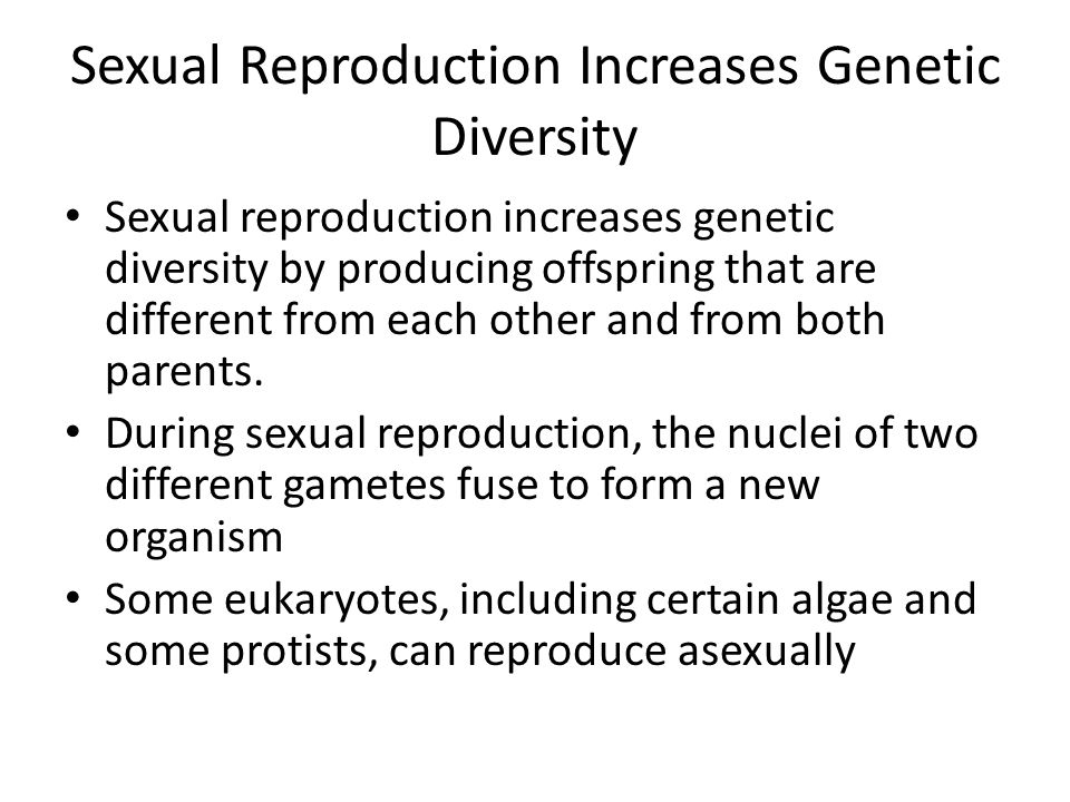 Sexual Reproduction Increases Genetic Diversity