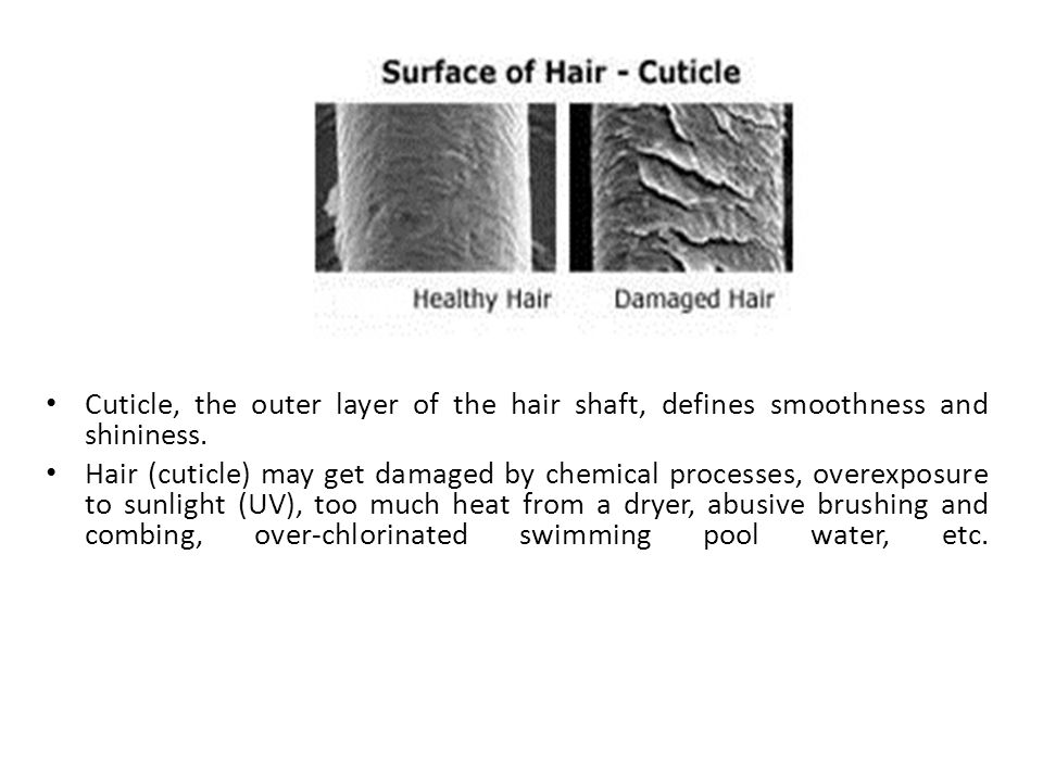 Cuticle, the outer layer of the hair shaft, defines smoothness and shininess.