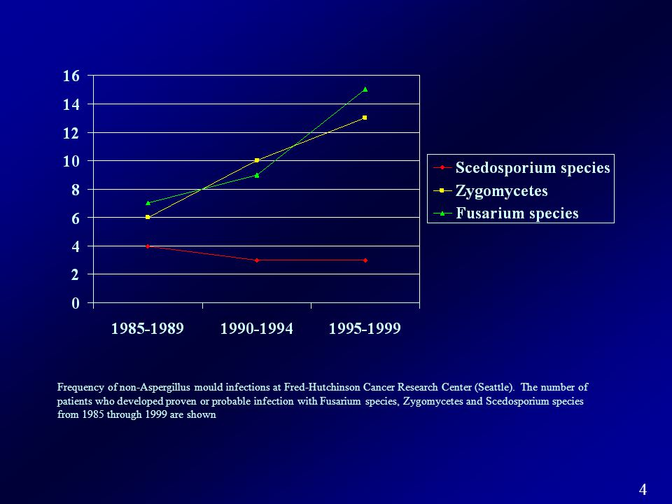 Frequency of non-Aspergillus mould infections at Fred-Hutchinson Cancer Research Center (Seattle).