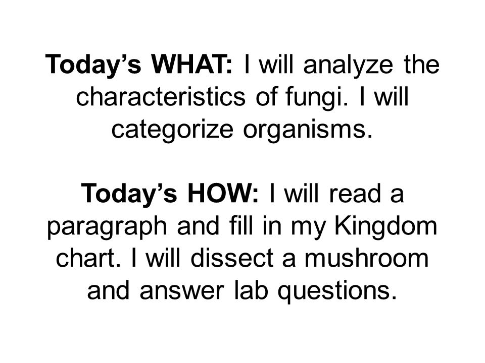 Today's WHAT: I will analyze the characteristics of fungi