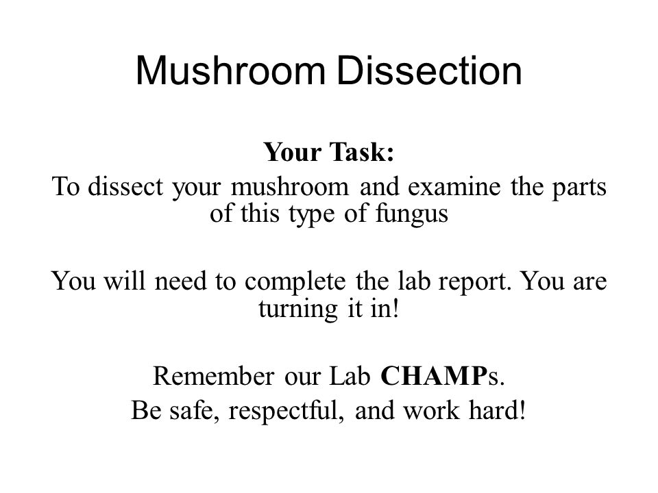 Mushroom Dissection Your Task: