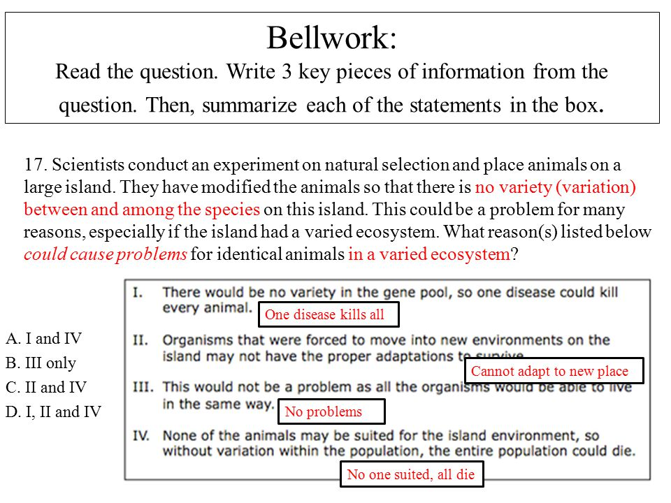 Bellwork: Read the question