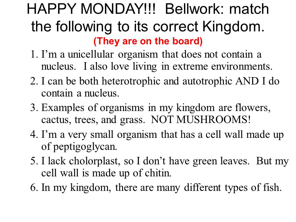 HAPPY MONDAY. Bellwork: match the following to its correct Kingdom
