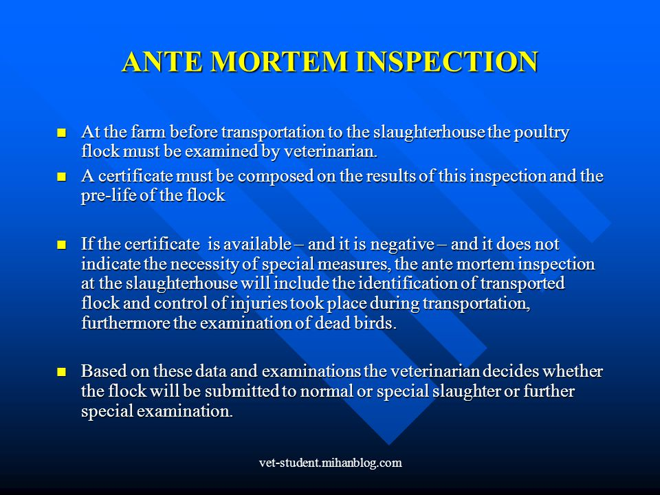 ANTE MORTEM INSPECTION