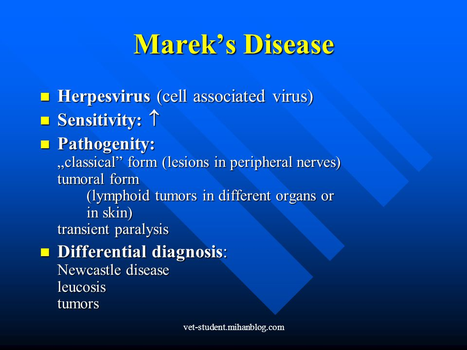 Marek's Disease Herpesvirus (cell associated virus) Sensitivity: 