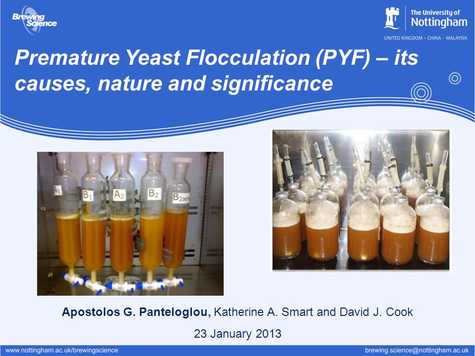Premature Yeast Flocculation (PYF) – its causes, nature and significance