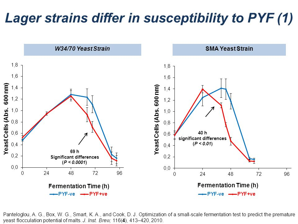Lager strains differ in susceptibility to PYF (1)
