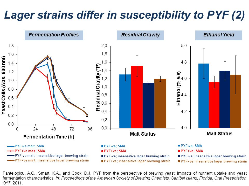 Lager strains differ in susceptibility to PYF (2)