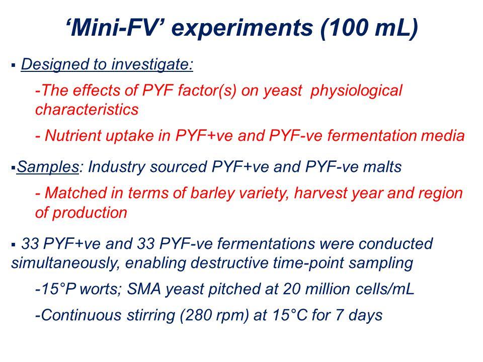 'Mini-FV' experiments (100 mL)