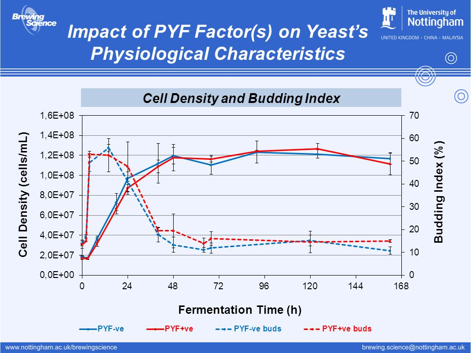 Impact of PYF Factor(s) on Yeast's Physiological Characteristics
