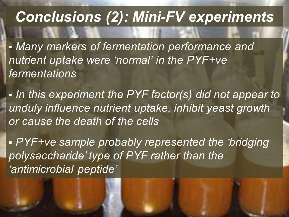 Conclusions (2): Mini-FV experiments