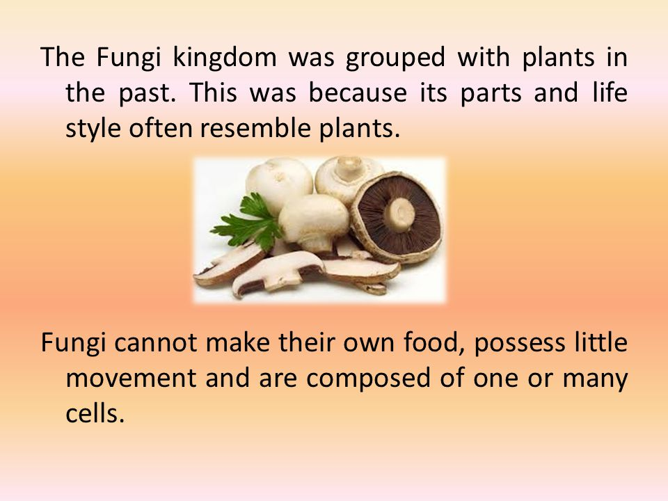 The Fungi kingdom was grouped with plants in the past