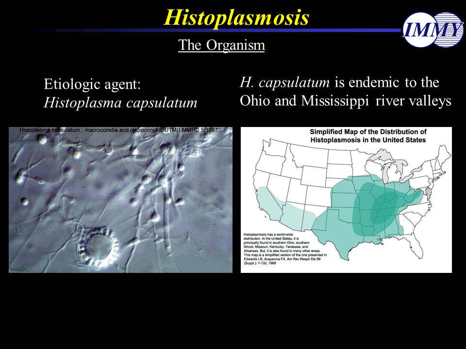 Histoplasmosis The Organism H. capsulatum is endemic to the