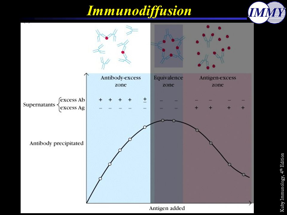 Immunodiffusion Kuby Immunology, 4th Edition