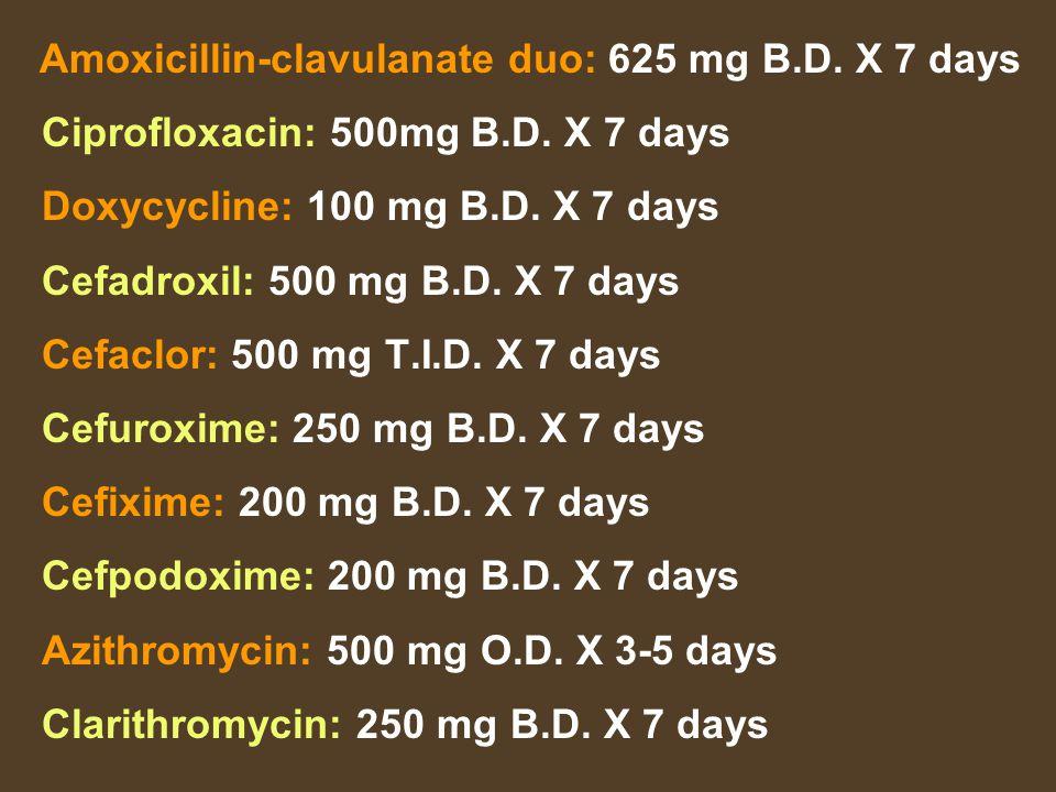Amoxicillin-clavulanate duo: 625 mg B.D. X 7 days