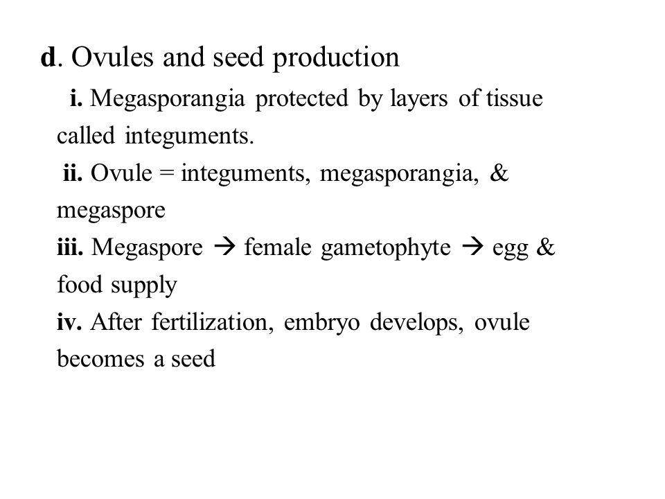 d. Ovules and seed production