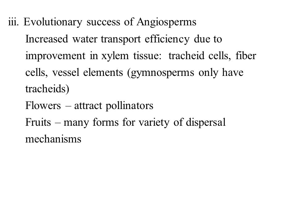 iii. Evolutionary success of Angiosperms