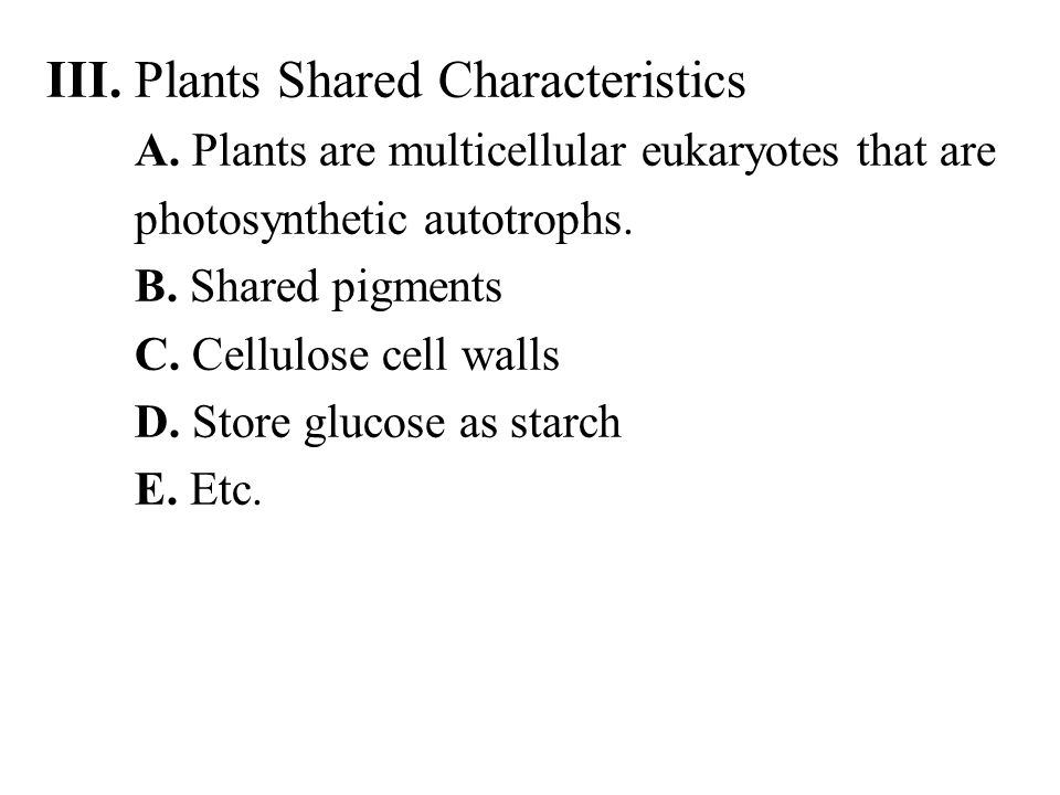 III. Plants Shared Characteristics