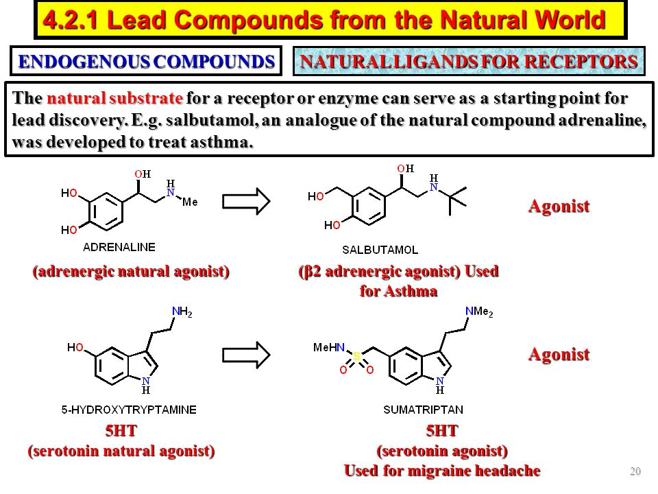 4.2.1 Lead Compounds from the Natural World