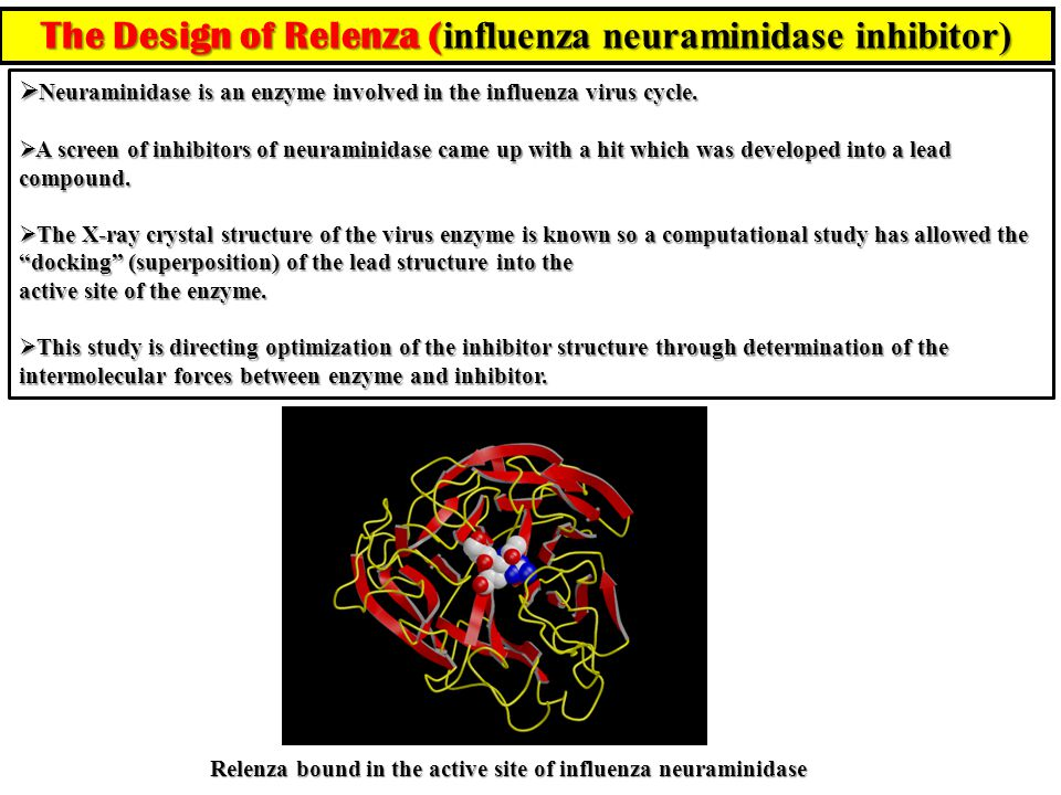 The Design of Relenza (influenza neuraminidase inhibitor)