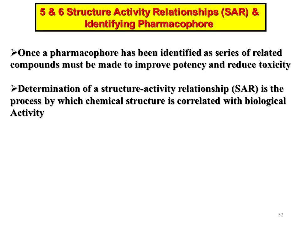 5 & 6 Structure Activity Relationships (SAR) &