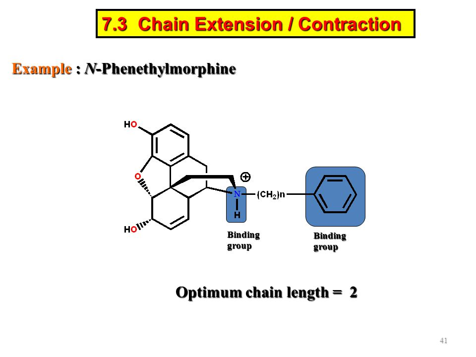 7.3 Chain Extension / Contraction