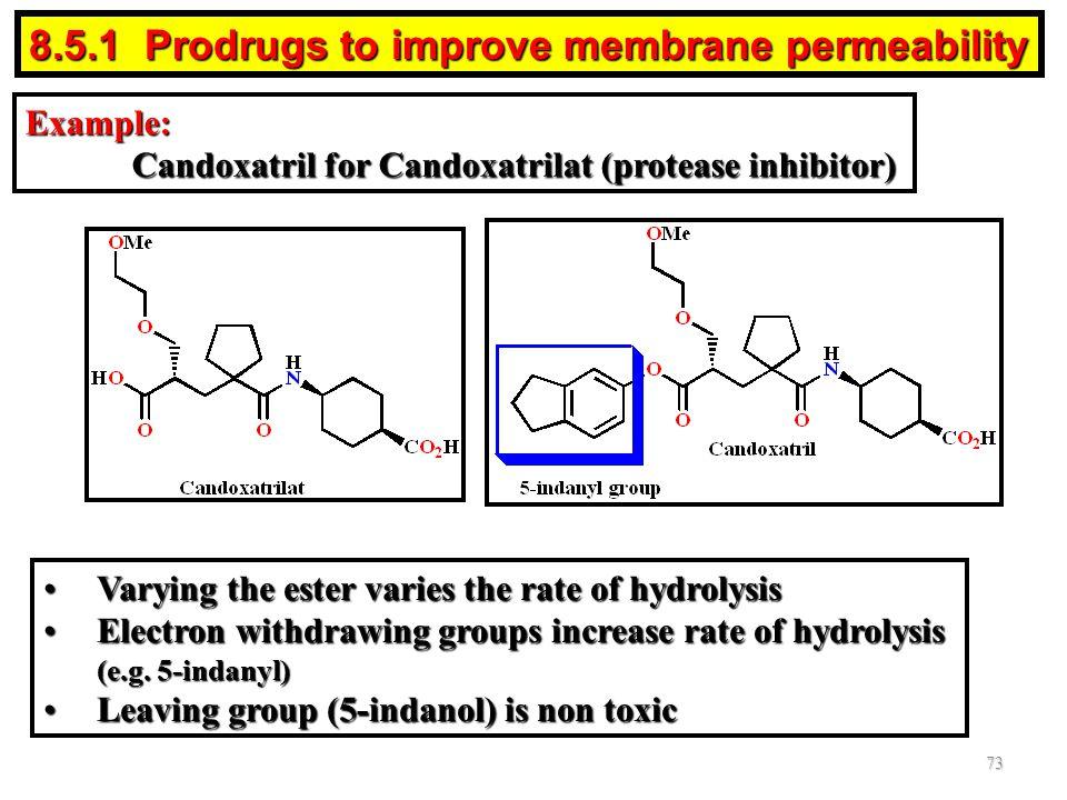 8.5.1 Prodrugs to improve membrane permeability