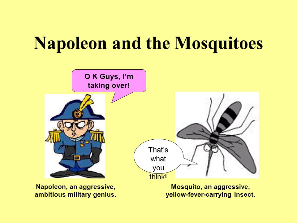 Napoleon and the Mosquitoes