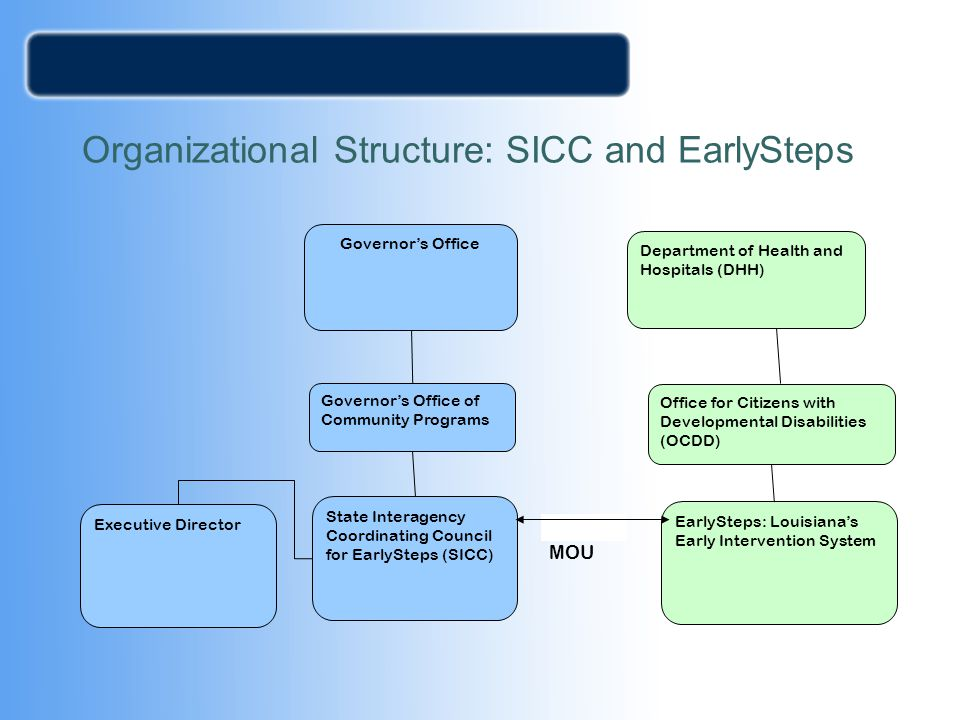 Organizational Structure: SICC and EarlySteps
