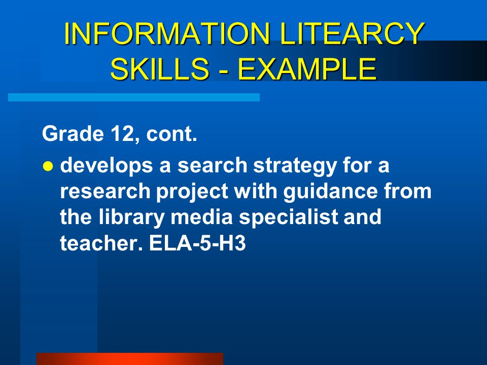 INFORMATION LITEARCY SKILLS - EXAMPLE
