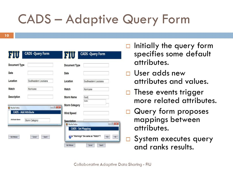 CADS – Adaptive Query Form
