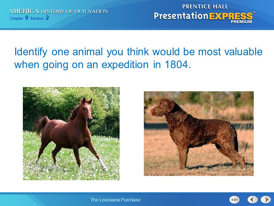 Identify one animal you think would be most valuable when going on an expedition in 1804.