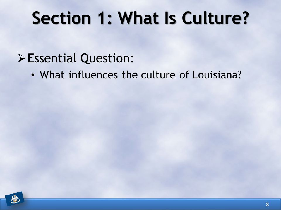 Section 1: What Is Culture